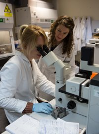 Diabetes researchers at King's College